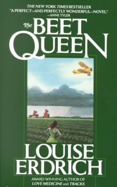 an analysis of the book the beet queen