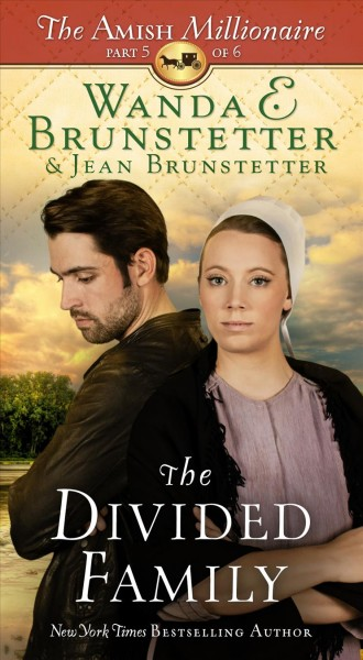 The Divided Family by Wanda E Brunstetter