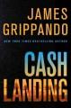 Go to record Cash landing : a novel