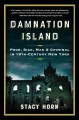 Go to record Damnation Island : poor, sick, mad & criminal in 19th-cent...