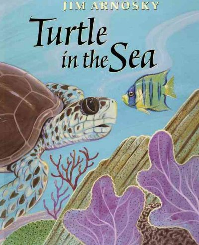 an introduction to sea turtles 1 table of contents introduction chapters acknowledgments 5 introduction 7 1 sea turtle taxonomy and distribution 9 key points 9 what is a sea turtle.