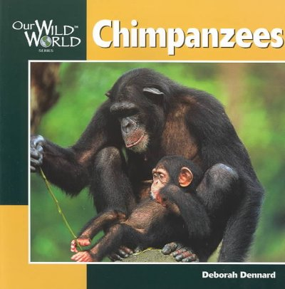 the physical attributes of chimpanzees