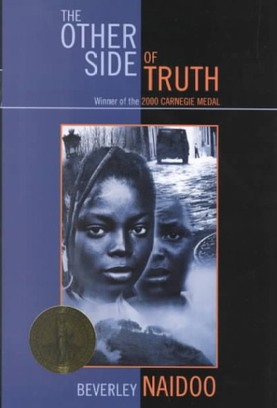 the other side of truth essays