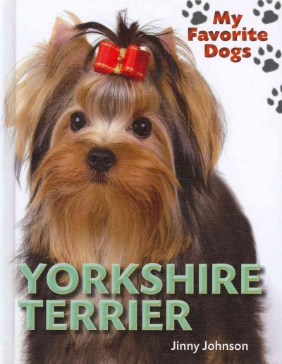 my favorite dogs Animal yorkshire terrier one of my favorite dogs this one is a real cutie pie more - tap the pin for the most adorable pawtastic fur baby apparel you'll love the.