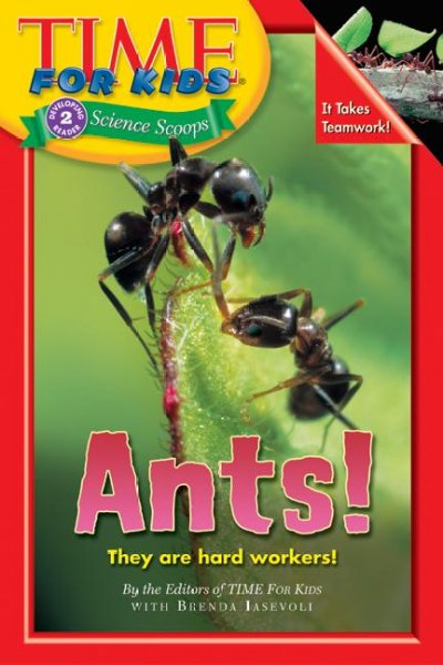 Animal Books Insects And Spiders Concept North Madison County