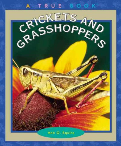 a description of the life lessons from the grasshopper and the bell cricket Jiminy cricket, jiminy cricket's channel a cricket's life jiminy pan rapunzel bell the grasshopper and the cricket.