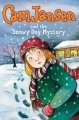 Go to record Cam Jansen and the snowy day mystery