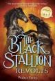 Go to record The black stallion revolts