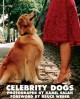 Go to record Celebrity Dogs