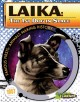 Go to record Laika : the 1st dog in space