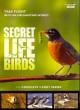 Go to record Secret life of birds.
