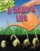 Go to record A bean's life