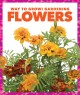 Go to record Flowers