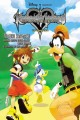 Go to record Kingdom hearts : chain of memories : the novel
