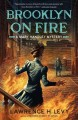 Go to record Brooklyn on fire : a Mary Handley mystery