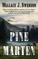 Go to record Pine Marten