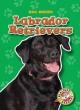 Go to record Labrador retrievers