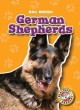 Go to record German shepherds