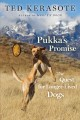 Go to record Pukka's promise /LP: the quest for longer-lived dogs