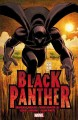 Go to record Black Panther. Who is the Black Panther?