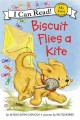 Go to record Biscuit flies a kite