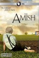 Go to record The Amish
