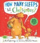 Go to record How many sleeps 'til Christmas?