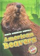 Go to record American beavers