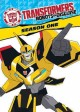 Go to record Transformers, robots in disguise. Season one