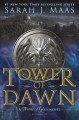 Go to record Tower of dawn