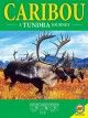 Go to record Caribou : a tundra journey