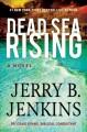 Go to record Dead Sea rising : a novel