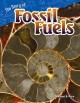 Go to record The story of fossil fuels