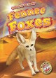 Go to record Fennec foxes