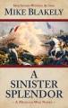 Go to record A sinister splendor : a Mexican war novel
