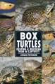 Go to record Box turtles