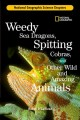 Go to record Weedy sea dragons, spitting cobras, and other wild and ama...